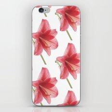Amaryllis pattern iPhone & iPod Skin