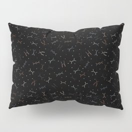Ditzy Feynman diagrams and Particles on Black Pillow Sham