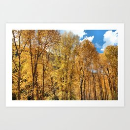 A Perfect Autumn Moment Art Print