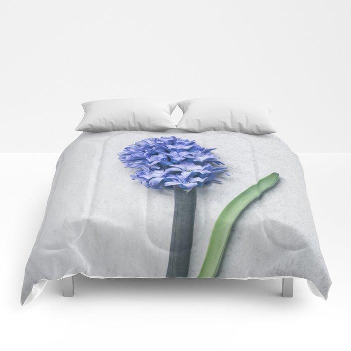 Blue Hyacinth Comforters