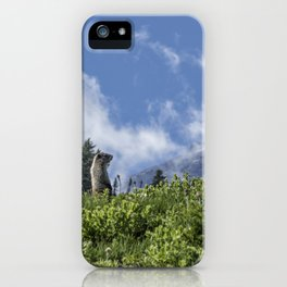 Marmot Checking Out His Neighborhood at Mount Rainier, No. 1 iPhone Case