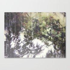 Floral Photo Transfer  Canvas Print