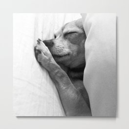 Colorless Dream Metal Print