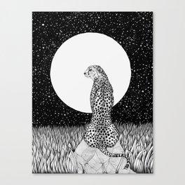 Cheetah Moon Canvas Print