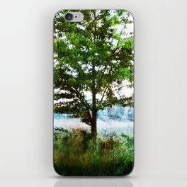 tinted meadow iPhone Skin