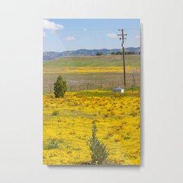 Wildflowers in the Countryside Metal Print