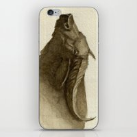 buffalo iPhone & iPod Skins featuring Buffalo by Vito Quintans