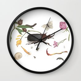 Common place miracles Part iii -Natural History Part Wall Clock