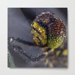 Dragonfly Selfie Metal Print