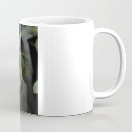 Beauty Part 2 Coffee Mug