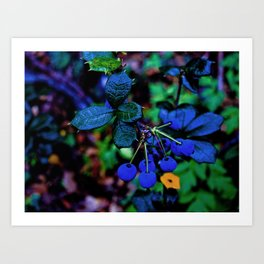 Exotic fruit and rich. Art Print