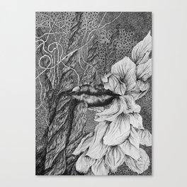 Dark mystery Canvas Print