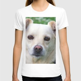 Blond dog portrait T-shirt