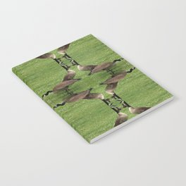 Chicago Geese 3 Notebook