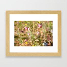 Pretty Nigella Framed Art Print