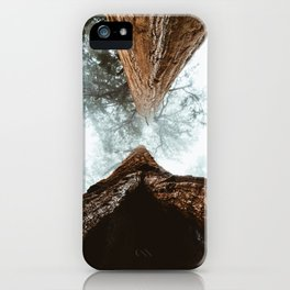Stand in Awe of the Giant Forest iPhone Case