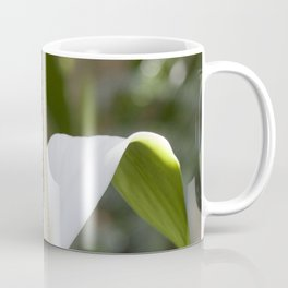 White Anthurium Lily Coffee Mug