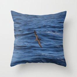 Short-Tailed Shearwater 2 Throw Pillow