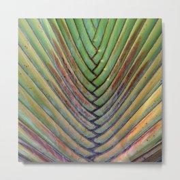 Sugar Beach Palm Metal Print