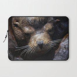 Sleepyhead Sea Lion Laptop Sleeve