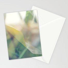 Paradise 2 Stationery Cards