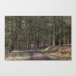 Bromley Hill Walk Canvas Print