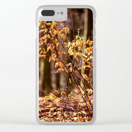 Golden leaves in February Clear iPhone Case