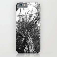 black and white forest iPhone 6s Slim Case