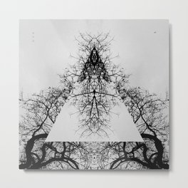 Pyramid of dry Tree Metal Print