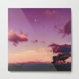 Costa Rican pink sky Metal Print