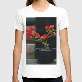 BEAUTIFUL CAMELIA BONSAI T-shirt