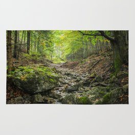 The autumn valley Rug