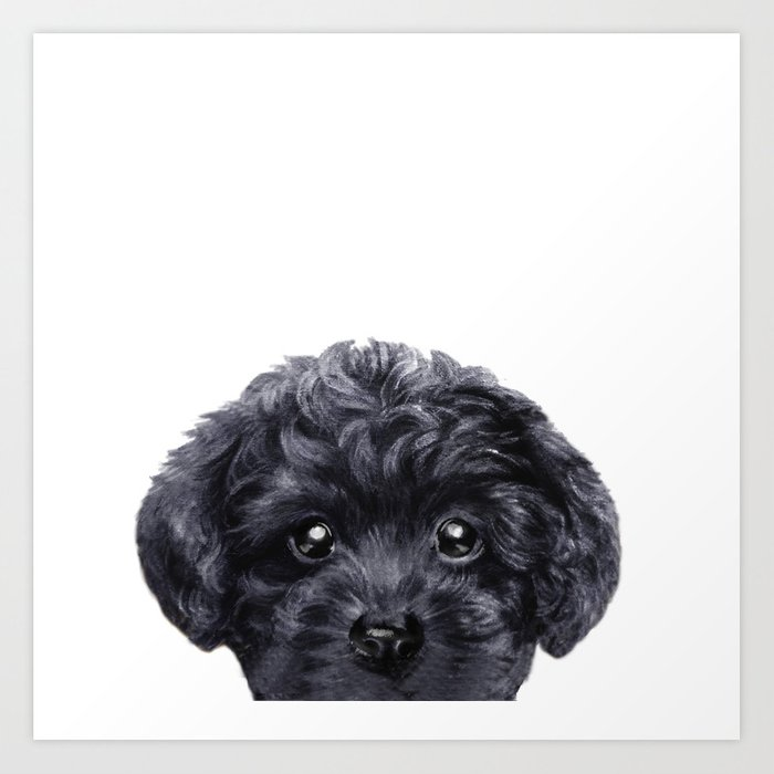 Black toy poodle Dog illustration original painting print Art Print