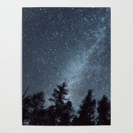 Milky Way in the Woods | Nature and Landscape Photography Poster
