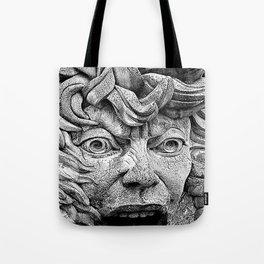 Fountain Face  Tote Bag
