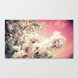 Pink Lavender Flowers Canvas Print