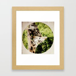 Rendezvous Framed Art Print