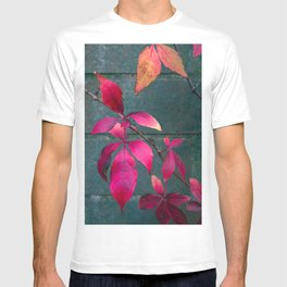 Autumn Splendour T-shirt