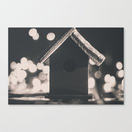 Birdy's House Canvas Print
