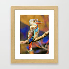 Kookaburra Dream | Painting Framed Art Print