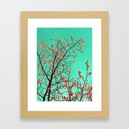 spring tree XXI Framed Art Print