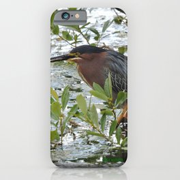 Green Heron at Lakeside iPhone Case