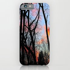 Sunset Through the Tangled Trees Slim Case iPhone 6s