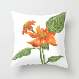 Margarida Mexicana - Mexican Daisy Throw Pillow