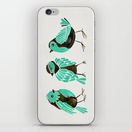 Turquoise Finches iPhone Skin