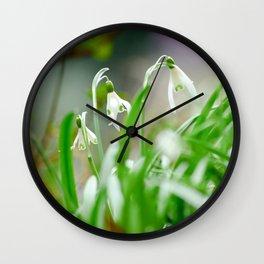 Snowdrops Wall Clock