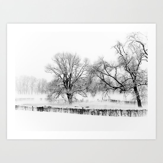 a winter scene Art Print