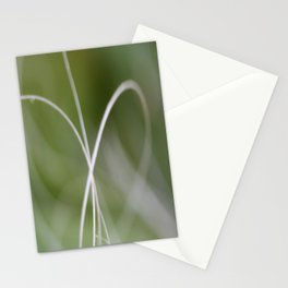 Macro of A Green Palm Tree Leaf  Fond Stationery Cards