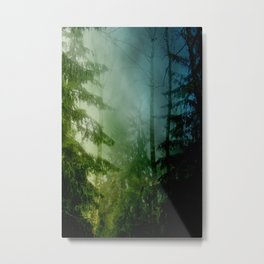 Blue pines Metal Print