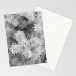 Cactus Detail Stationery Cards